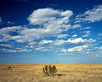 Cloud formations over the Comanche National Grassland; Las Animas County, CO
