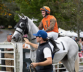1st Ratings Handicap - Animal Kingston