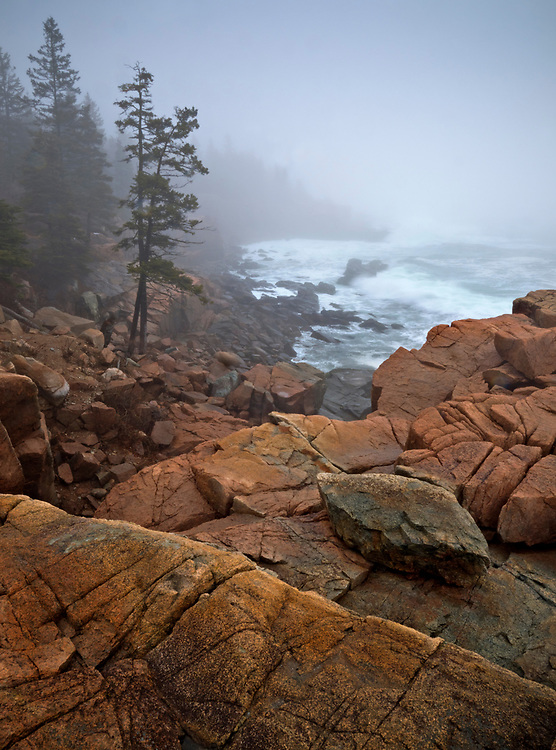 Waves crashed into the granite coastline along Ocean Drive near Thunder Hole in Acadia National Park, Maine, USA