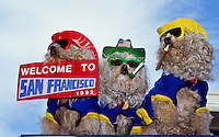 Tree puddle dogs with colorful hats, clothes and  sunglasses - with cigarets in mouth and a welcome to San Francisco sign foto, reise, photograph, image, images, photo,<br />