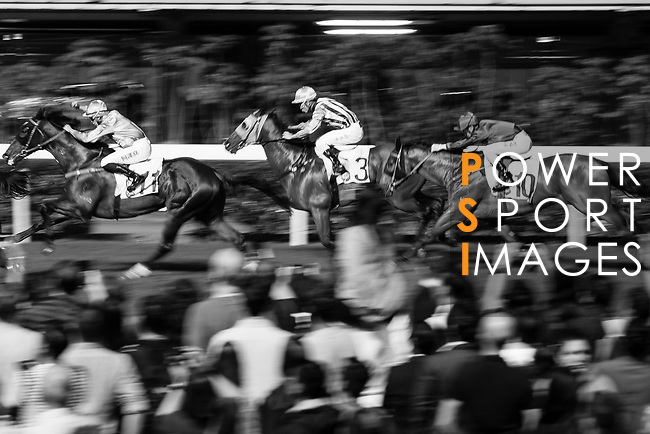 Jockey #3 Derek Leung Ka-chun riding House of Luck (C) during the race 5 of Hong Kong Racing at Happy Valley Race Course on November 29, 2017 in Hong Kong, Hong Kong. Photo by Marcio Rodrigo Machado / Power Sport Images<br /> <br /> <br /> (EDITOR NOTE; THIS IMAGES HAS BEEN CHANGED FOR B&W WITH LR)