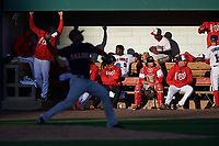 Potomac Nationals bench during the first game of a doubleheader against the Salem Red Sox on May 13, 2017 at G. Richard Pfitzner Stadium in Woodbridge, Virginia.  Potomac defeated Salem 6-0.  (Mike Janes/Four Seam Images)