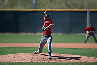 Arizona Diamondbacks relief pitcher Jhoan Duran (36) delivers a pitch to the plate during a Spring Training game against Meiji University at Salt River Fields at Talking Stick on March 12, 2018 in Scottsdale, Arizona. (Zachary Lucy/Four Seam Images)