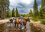 Cowboy leading horses at Post Corral Creek, John Muir Wilderness, Sierra National Forest, on the western slope of the Sierra Nevada, California