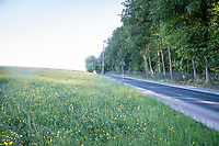 Bruine Put in Beersel<br /> <br /> Cycling in Flanders (BEL)<br /> cycling hotspots in Brabant<br /> <br /> ©kramon