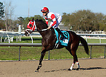 March 28, 2015 International Sta (Shown here breaking away from the pony in the post parade), ridden by Miguel Mena, wins the G2 Louisiana Derby over Stanford (Florent Geroux).  Owner Ken and Sarah Ramsey, trainer Michael J. Maker. ©Mary M. Meek/ESW/CSM