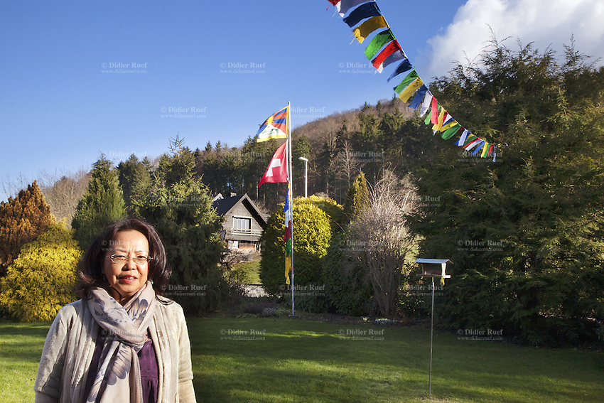 "Switzerland. Canton Aargau. Rüfenah. Yangchen Büchli in her garden. Lung ta are tibetan prayer flags of square or rectangular shape, and are connected along their top edges to a long string or thread. The swiss tibetan woman is an Aeschimann's child who arrived 50 years ago in Switzerland to receive custody on a private initiative by an influential Swiss industrialist, Charles Aeschimann. In 1962, Charles Aeschimann agreed with the Dalai Lama to take 200 children and place them in Swiss foster homes and give them a chance for a better life and a good education. Most of the children still had parents in exile or in Tibet, just a few were orphans. The Tibetan flag, also known as the ""snow lion flag"" and the 'Free Tibet flag', was a flag of the military of Tibet, introduced by the 13th Dalai Lama in 1912 and used for the same capacity until 1959. Designed with the help of a Japanese priest, it reflects the design motif of the Japanese military's Rising Sun Flag. Since the 1960s, it is used a symbol of the Tibetan independence movement. The flag of Switzerland consists of a red flag with a white cross (a bold, equilateral cross) in the centre. 25.02.2015 © 2015 Didier Ruef"