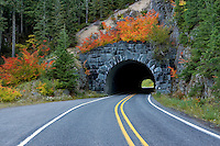 Road and tunnel through Mt. Rainier National Park. Washington with fall color vine maple.