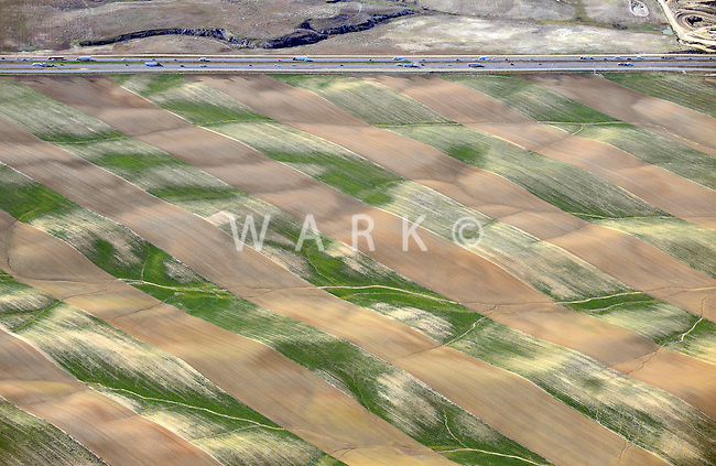 Farm fields near Ft. Collins, Colorado.