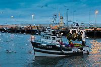 Europe/France/Pays de la Loire/44/Loire Atlantique/Presqu'île Guérandaise/La Turballe:  Le Port de pêche - Retour de pêche  des sardiniers  //   France, Loire Atlantique, Guerande Peninsula, La Turballe Sardinier fishing port,  Back sardine fishing