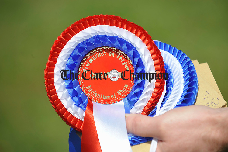 The rosettes are ready for the sheep section  at Newmarket Show. Photograph by John Kelly.