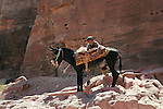 A young Bedouin resting on his donkey in the ancient Jordanian city of Petra.