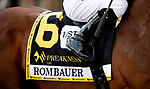 MAY 15, 2021: Rombauer before the Preakness Stakes at Pimlico Racecourse in Baltimore, Maryland on May 15, 2021. EversEclipse Sportswire/CSM