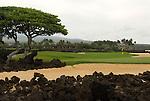 Hawaiian Island golf course detail