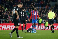 Christian Benteke of Crystal Palace concedes a free kick during the Premier League match between Crystal Palace and Brighton and Hove Albion at Selhurst Park, London, England on 16 December 2019. Photo by Carlton Myrie / PRiME Media Images.