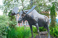 Canada Saint John New Brunswick Market Square Broadway statue of Moose in park