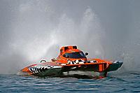 "Doug Rapp, GP-79 ""Bad Influence""       (Grand Prix Hydroplane(s)"