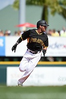 Pittsburgh Pirates infielder Gustavo Nunez (67) during a Spring Training game against the Boston Red Sox on March 12, 2015 at McKechnie Field in Bradenton, Florida.  Boston defeated Pittsburgh 5-1.  (Mike Janes/Four Seam Images)