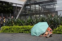 ATENCAO EDITOR: FOTO EMBARGADA PARA VEICULOS INTERNACIONAIS. SAO PAULO, SP, 14 DE NOVEMBRO DE 2012 - Morador de rua dorme embaixo de guarda chuva na Avenida Paulista, regiao central, na manha desta quarta feira, 14  FOTO: ALEXANDRE MOREIRA - BRAZIL PHOTO PRESS.