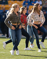 The PItt dance team performs during a break. The Pitt Panthers upset the undefeated Miami Hurricanes 24-14 on November 24, 2017 at Heinz Field, Pittsburgh, Pennsylvania.