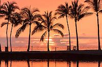 A colorful sunset with palm trees at the Waikoloa pond, Big Island.