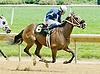 Capital Fellow winning at Delaware Park on 6/2/12