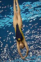 3 Meter Diving Prelim