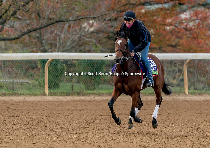 November 1, 2020: March To The Arch, trained by trainer Mark E. Casse, exercises in preparation for the Breeders' Cup Mile at Keeneland Racetrack in Lexington, Kentucky on November 1, 2020. Scott Serio/Eclipse Sportswire/Breeders Cup /CSM