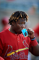 Palm Beach Cardinals center fielder Johan Mieses (37) in the dugout during a game against the Florida Fire Frogs on May 1, 2018 at Osceola County Stadium in Kissimmee, Florida.  Florida defeated Palm Beach 3-2.  (Mike Janes/Four Seam Images)