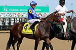 September 14, 2019 : Lazy Daisy (#4, Abel Cedillo) in the post parade of the Pocahontas Stakes at Churchill Downs, Louisville, Kentucky. Trainer Doug O'Neill, owner ERJ Racing LLC (Eric Johnson), Great Friends Stable LLC (Scott Kaplan), and Tom Mansor. By Paynter x Romantic Intention (Suave) Mary M. Meek/ESW/CSM