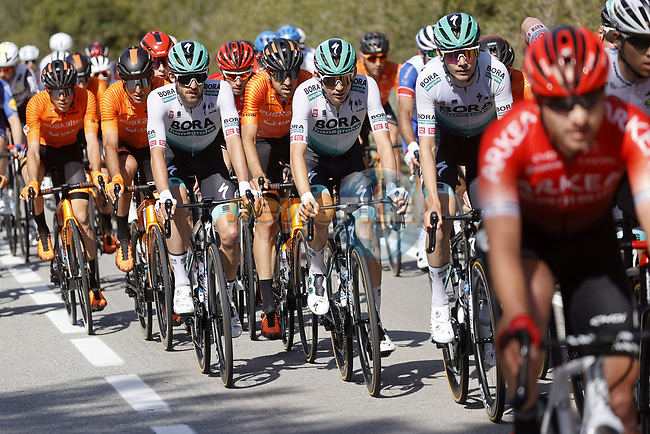 Lennard Kamna and Ben Zwiehoff (GER) Bora-Hansgrohe in the peloton during Stage 7 of the 100th edition of the Volta Ciclista a Catalunya 2021, running 133km from Barcelona to Barcelona, Spain. 28th March 2021.   <br /> Picture: Bora-Hansgrohe/Luis Angel Gomez/BettiniPhoto | Cyclefile<br /> <br /> All photos usage must carry mandatory copyright credit (© Cyclefile | Bora-Hansgrohe/Luis Angel Gomez/BettiniPhoto)