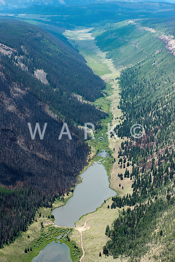 South Lazy U Reservior, Hinsdale County, Colorado.  Burn scar from West Fork Complex fire. July 2013.  80422