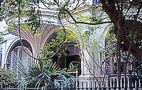 Charleston:  Charleston Estate--Window, Piazza, Vines.  Photo '78.