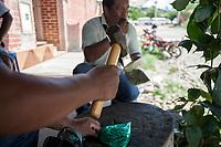 """Supporters of former Bolivian President Evo Morales, known as coca growers """"cocaleros"""", smash coca leaves for chewing in Lauca Eñe, Chapare province, Bolivia. November 26, 2019.<br /> Les partisans de l'ancien président bolivien Evo Morales, connu sous le nom de cultivateurs de coca """"cocaleros"""", écrasent des feuilles de coca pour les mâcher à Lauca Eñe, province du Chapare, Bolivie. 26 novembre 2019."""