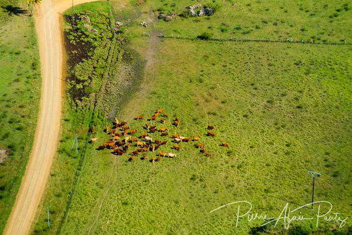 Agriculture sur la côte Ouest