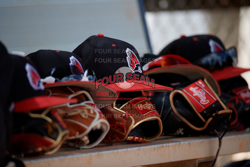Ball State Cardinals hats and Rawling gloves on the bench during a game against the Saint Joseph's Hawks on March 9, 2019 at North Charlotte Regional Park in Port Charlotte, Florida.  Ball State defeated Saint Joseph's 7-5.  (Mike Janes/Four Seam Images)