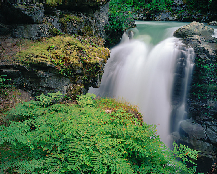 Nooksack Falls on the North Fork of the Nooksack River; Mt. Baker/Snoqualmie National Forest, WA