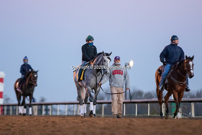 November 4, 2020: Tacitus, center, trained by trainer William I. Mott, exercises in preparation for the Breeders' Cup Classic at Keeneland Racetrack in Lexington, Kentucky on November 4, 2020. Gabriella Audi/Eclipse Sportswire/Breeder's Cup/CSM