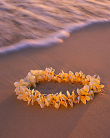 Yellow Plumeria Flower Lei on Tropical Beach at Sunset, Hawaii, USA.