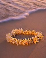 Yellow Plumeria Flower Lei on Tropical Beach at Sunset, Hawaii, USA.