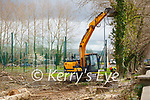 The tree felling operation at CBS the Green on Tuesday