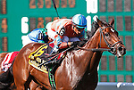 July 29, 2012 Laughing, Rafael Bejarano up, wins the grade III Taylor Made Matchmaker Stakes at Monmouth Park Racetrack, Oceanport, NJ. @Joan Fairman Kanes/Eclipse Sportswire
