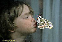 LE02-003x  Cecropia Moth - child kissing adult female moth through screen - Hyalophora cecropia