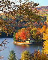 Cabin on shore of Wyman Lake, Maine