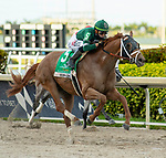 MARCH 27, 2021: #5 KNOWN AGENDA and Jockey Irad Ortiz Jr. join the Derby Trail after winning the $750,000 Grade I Curlin Florida Derby on Florida Derby Day at Gulfstream Park in Hallandale Beach, Florida on March 27, 2021. Carson Dennis/Eclipse Sportswire/CSM