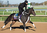 November 4, 2020: Wet Your Whistle, trained by trainer Michael J. Trombetta, exercises in preparation for the Breeders' Cup Turf Sprint at Keeneland Racetrack in Lexington, Kentucky on November 4, 2020. Jessica Morgan/Eclipse Sportswire/Breeders Cup