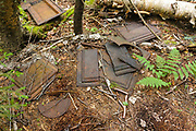 Stove pieces, protected artifacts, at an old dwelling site in the Carrigain Brook drainage in Livermore, New Hampshire. This camp is likely a logging camp of the Sawyer River Railroad (1877-1928). Artifacts, such as these, are protected, and the removal of historical artifacts from federal lands without a permit is a violation of federal law.