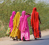 Colorful dressed Rajasthan Women along the Road, Rajasthan India