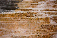 Travertine terraces are pictured at Mammoth Hot Springs in Yellowstone National Park, Wyoming on Wednesday, May 24, 2017. (Photo by James Brosher)