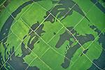 Crop mosaic breaks world record by Azim Khan Ronnie